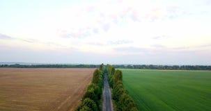 Antenne van gebieden met diverse soorten landbouw wordt geschoten die farming Lucht schot van landbouwgrond Antenne van landbouw  stock footage