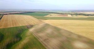 Antenne van gebieden met diverse soorten landbouw wordt geschoten die farming Lucht schot van landbouwgrond Antenne van landbouw  stock videobeelden