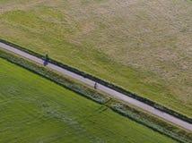 Antenne van meadowland die door rechte fietssteeg wordt gescheiden met fietser op het Nederlandse Eiland Texel royalty-vrije stock foto's