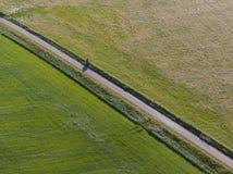 Antenne van meadowland die door rechte fietssteeg wordt gescheiden op het Nederlandse Eiland Texel royalty-vrije stock foto's