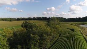 Antenne von Getreidefeldern in Indiana 60fps stock footage