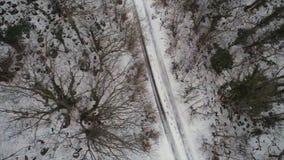 Antenne voor het bos dat met sneeuw en de winterweg wordt behandeld, de mening van het vogeloog schot Hoogste mening die van land stock foto's