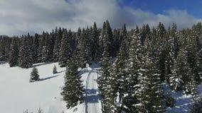ANTENNE: Wald des verschneiten Winters stock footage