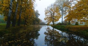 Antennen parkerar vatten för dammet för sjön för banan för skoghöstslingan arkivfilmer