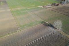 Antennenfelder im Vorfrühling Luftschuß von Feldern Stockfoto