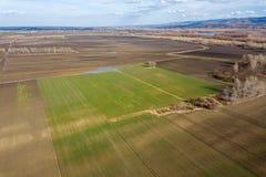 Antennenfelder im Vorfrühling Luftschuß von Feldern Stockfotos