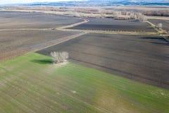 Antennenfelder im Vorfrühling Luftschuß von Feldern Lizenzfreies Stockfoto