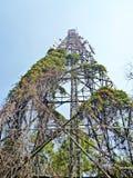Antennenpfostenturm Stockfoto