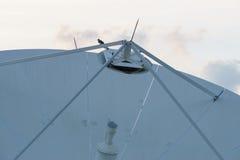 Antennes paraboliques Image stock