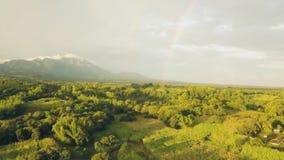 Anteny owoc krajobrazowy ogród i rolniczy pole w azjatykciej wsi na tle góry i tęczy piękne zbiory