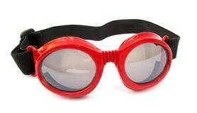 Anteojos de la natación imagen de archivo
