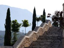 A wide staircase with cypress trees on the sides stock image