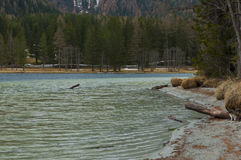 Anterselva& x27; lago bonito de s durante o springer Fotografia de Stock Royalty Free
