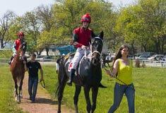 Antes da raça de cavalo Fotos de Stock Royalty Free