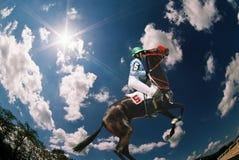 Antes da raça de cavalo. Imagens de Stock Royalty Free