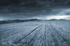 Antes de la tormenta Fotografía de archivo libre de regalías