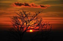Antes de puesta del sol Foto de archivo