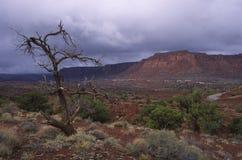 Antes de una tormenta de la lluvia en el desierto de Utah Foto de archivo