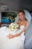 Antes de wedding foto de stock