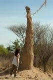Anthill e mulher no vale de Omo, Etiópia imagem de stock