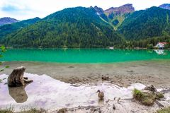 The Antholzer See a lake in South Tyrol, Italy. The Antholzer See Italian: Lago di Anterselva a little lake in South Tyrol, Italy stock photography