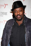 Anthony Hamilton Royalty Free Stock Photos