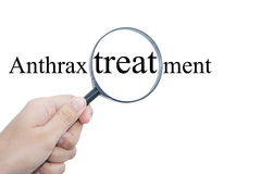 Anthrax treatment with magnifying glass Stock Photography