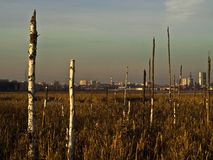 Anthropogenic Landschaft Stockfotos