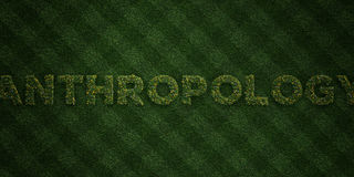 ANTHROPOLOGY - fresh Grass letters with flowers and dandelions - 3D rendered royalty free stock image. Can be used for online banner ads and direct mailers Stock Images