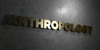 Anthropology - Gold text on black background - 3D rendered royalty free stock picture. This image can be used for an online website banner ad or a print Stock Image