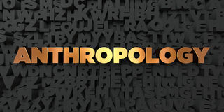 Anthropology - Gold text on black background - 3D rendered royalty free stock picture. This image can be used for an online website banner ad or a print Royalty Free Stock Images