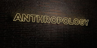ANTHROPOLOGY -Realistic Neon Sign on Brick Wall background - 3D rendered royalty free stock image. Can be used for online banner ads and direct mailers Stock Photography