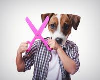 Anthropomorphic hund med stor sax arkivbilder