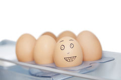 Anthropomorphic and plain brown eggs in carton against white background Royalty Free Stock Photo