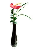 anthurium κόκκινο vase λουλουδιών Στοκ φωτογραφία με δικαίωμα ελεύθερης χρήσης