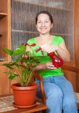 anthurium που ανθίζει po τη γυναίκα Στοκ Εικόνες