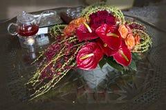 Anthurium. Anthúrium - genus of evergreen plants of the family Aroidnye Royalty Free Stock Photo
