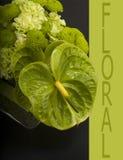 Anthurium boquet Στοκ φωτογραφία με δικαίωμα ελεύθερης χρήσης