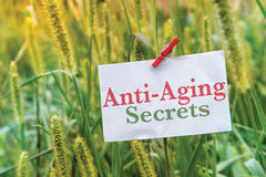 Anti Aging Secrets. Concept on a note in a green grass field Royalty Free Stock Photos