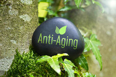 Anti-Aging Stock Photo