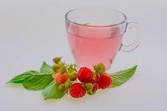 Anti bevande di erbe caricate ossidante naturale; tè del lampone immagine stock