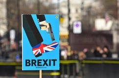 Anti-Brexit undertecknar in London, UK Januari 2019 royaltyfri foto