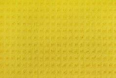 Anti esponja de celulose bacteriana Imagens de Stock