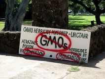 Anti-GMO Protest sign at Thomas Square. Honolulu - November 5, 2012: Anti-GMO Protest sign at Thomas Square in Honolulu, Hawaii, against, angry, autonomy, banner stock image