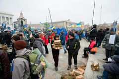 Anti-government demonstrators harvest woodfire occupying main Maidan square and require to sign the documents of Accession to EU Stock Photo
