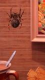 Anti-gravitational spider Royalty Free Stock Image