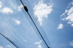 Anti-hail protective net for agricultural and other use Royalty Free Stock Images