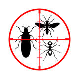 Anti insects. Spay insects on a white background Royalty Free Stock Photos