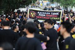 anti lynas Royaltyfria Bilder