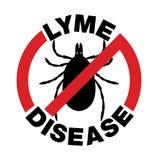 Anti malattia di Lyme Tick Bite Icon Fotografia Stock